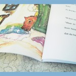 boek softcover color