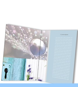 design book Madina's Dream