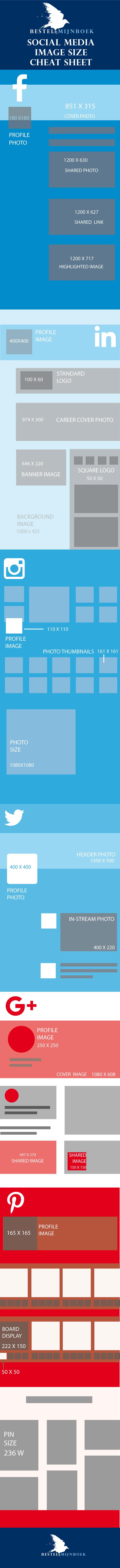 infographicv08